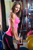 Woman in gym. Portrait of attractive smiling woman after workout wearing pink top and matching sports shorts standing in gym with yellow weights and pink rubber Royalty Free Stock Image