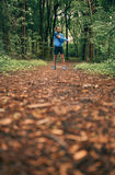 Fit male jogger stretches during day training for cross country forest trail race in a nature park. Competitive, athletic young man warms up muscles before Royalty Free Stock Photo