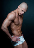 Fit male model. Muscled male model posing in studio Stock Photos