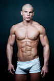 Fit male model. Muscled male model posing in studio Royalty Free Stock Photo
