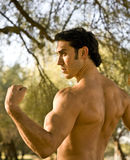 Fit male model. A fit male model showing off his biceps Stock Photography