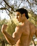 fit male modell Arkivbild