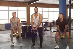 Fit Male Muscular Friends Working Out in Gym royalty free stock photo