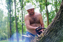 Fit man carrying a chainsaw in woodland Stock Photo