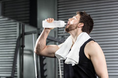 Fit man drinking water Stock Photos