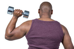 Fit man exercising with dumbbell Stock Images