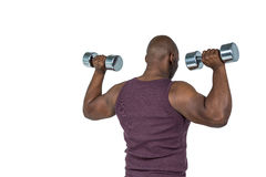 Fit man exercising with dumbbell Royalty Free Stock Photo