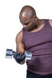 Fit man exercising with dumbbell Royalty Free Stock Image