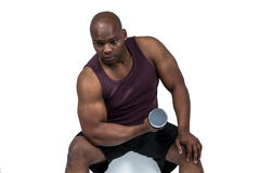Fit man exercising with dumbbells Royalty Free Stock Image