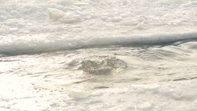 A bearded man dips under freezing cold water. A fit man swims in cold winter lake and puts his head under water stock video footage