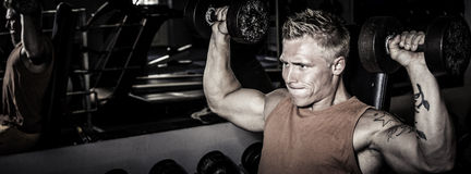 Fit man training in the gym. With dumbbells royalty free stock images