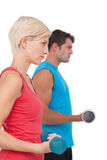 Fit man and woman lifting dumbbells. Fit men and women lifting dumbbells on white background royalty free stock images