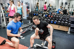 Fit man working out in weights room. Fit men working out in weights room at the gym Royalty Free Stock Photo