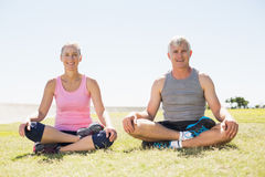 Fit mature couple sitting in lotus pose on the grass Royalty Free Stock Image