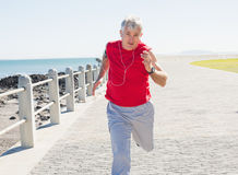 Fit mature man jogging on the pier Stock Photo