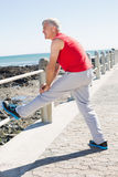 Fit mature man warming up on the pier Royalty Free Stock Photos