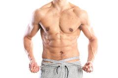 Fit, muscular male body Royalty Free Stock Image