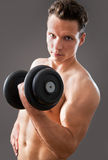Fit muscular man Royalty Free Stock Images