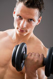 Fit muscular man Royalty Free Stock Image