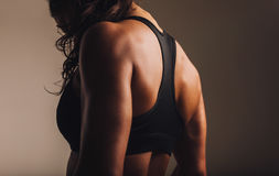 Fit and muscular woman in sports bra. Standing with her back towards camera. Rear view of fitness female with muscular body stock image