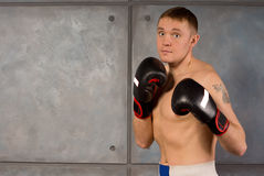 Fit muscular young boxer in training Royalty Free Stock Photo