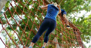 Fit people climbing a net during obstacle course 4k. Fit people climbing a net during obstacle course in boot camp 4k stock footage