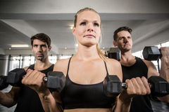 Fit people do some weightlifting together Royalty Free Stock Photography