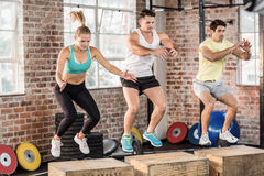 Fit people doing jump box Stock Photography
