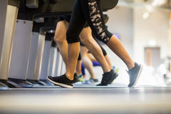 Fit people jogging on treadmills Stock Images