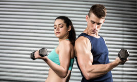 Fit people lifting dumbbells back to back Royalty Free Stock Photography