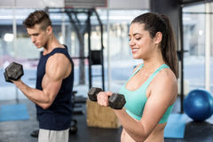 Fit people lifting dumbbells Stock Image