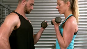 Fit people lifting dumbbells face to face. In crossfit stock footage