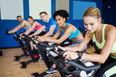 Fit people in a spin class Royalty Free Stock Images