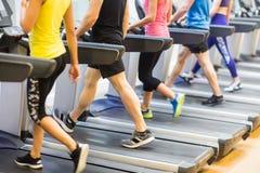 Fit people walking on treadmills Stock Image