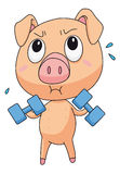 Fit pig Stock Images