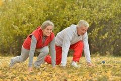 Fit senior couple exercising Royalty Free Stock Photos