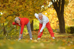 Fit senior couple Royalty Free Stock Photo