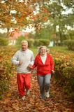 Fit senior couple Royalty Free Stock Image