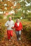 Fit senior couple Royalty Free Stock Image