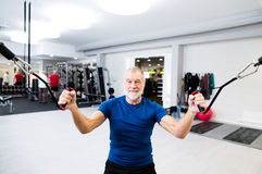 Fit senior man in gym working out with weights. Stock Images