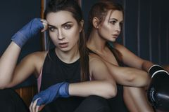 Fit slim young beautiful brunette women boxing in sportswear. Da. Rk dim light. Toned image royalty free stock images