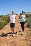 Fit smiling couple jogging down mountain trail Royalty Free Stock Photos
