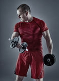Man doing biceps curl with dumbbells Stock Image