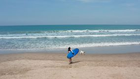 Fit surfer woman runs into the ocean with surfboard. Modern lifestyle. Sport camp and extreme swim on summer vacation. Aerial drone footage stock video footage