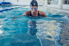Fit swimmer coming up for air in the swimming pool Stock Images