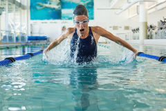 Fit swimmer doing the butterfly stroke in the swimming pool Stock Image