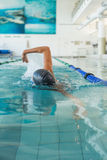 Fit swimmer doing the front stroke in the swimming pool Royalty Free Stock Photography
