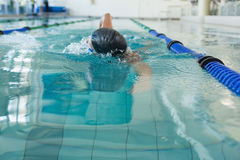 Fit swimmer doing the front stroke in the swimming pool Stock Image