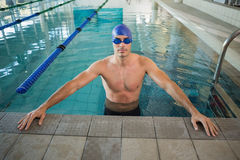 Fit swimmer in pool at leisure center Stock Photography