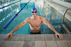 Fit swimmer in the pool at leisure center Stock Photos